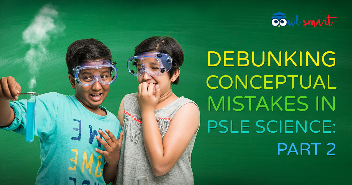 Debunking Conceptual Mistakes in PSLE Science Part 2