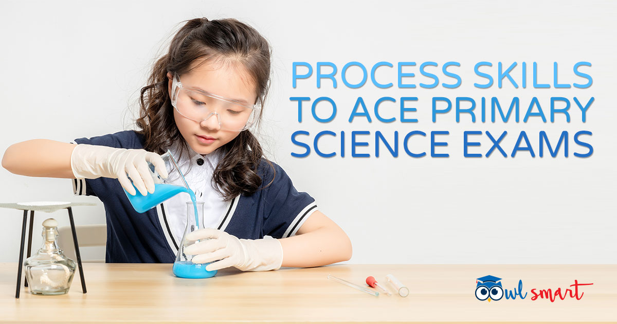Process Skills to Ace Primary Science Exams